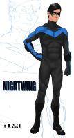 Nightwing by Bunk2