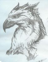 Gryphon by dark-sibertora