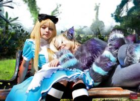 Alice and Cat by edokrasnodar