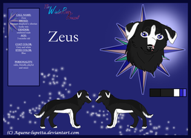 Zeus Model-sheet by Aquene-lupetta