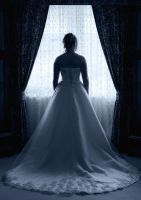 Bridal Silhouette by Lightkast