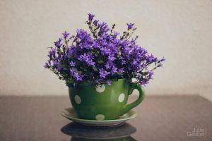 Flowers in a big teacup by JuliaGeisler
