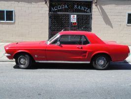 Mustang Sally by Brooklyn47