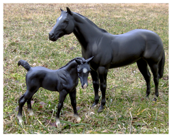Breyer - Late Winter Frolic by The-Toy-Chest