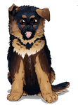 Shepherd puppy by OlgaH-SteelClaw1