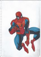 Spiderman by danbol