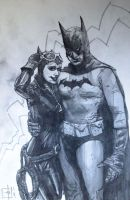 The Bat in the Cat by tomasoverbai