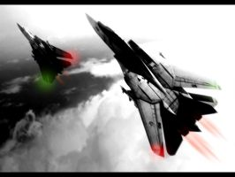 F14 Tomcat by Fall-Out-Bro