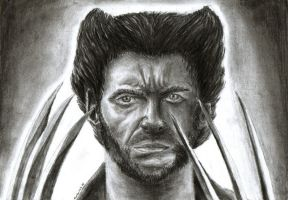 The Wolverine by Lighiting-Dragon