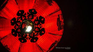 Day 141: A Chinese Lamp. by umerr2000