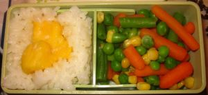Mango Rice Bento by Thenextera