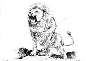 Lion by grote-design