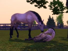 Sims 3 Mare and Foal by Larafan2