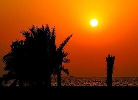 UAE beach sunset 1 by Hamrani