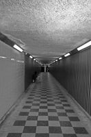 Tunnel by HonestyS2