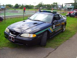 Ford Mustang SVT COBRA Cop Car by Mister-Lou