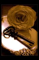 The Key to Your Heart by Forestina-Fotos