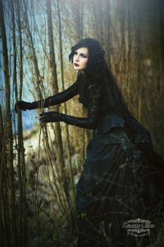 The Story of Loreley .  Part 1 . Desire and Hope by CrescentiaMoon