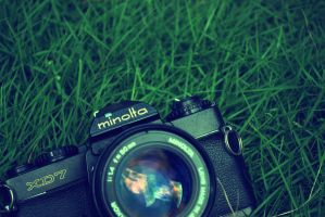 My Mom's Minolta Again by patdes