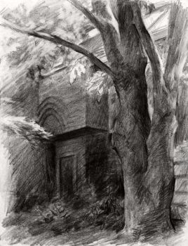 Pencil Sketching : Tree Shadow by JerryCai