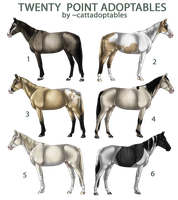 EQUINE ADOPTABLES -- 20 POINTS by cattadoptables