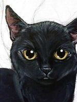Black Cat WIP by sobeyondthis