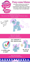 Get To Know a Brony Meme by Flutter-Butter