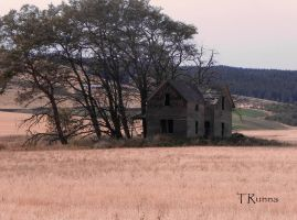 Homestead by TRunna