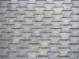 Ashalt Shingle Roof 02 by Limited-Vision-Stock