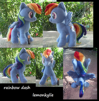 END-AUCTION EBAY rainbow dash plushie! END by lemonkylie