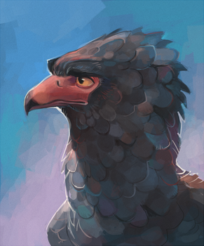 An another birdy by Drkav
