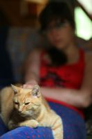 Rudolf on S.A.'s lap by Dr-Eryk-Lim