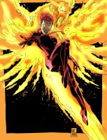 Phoenix- Fire Bird by jdcunard