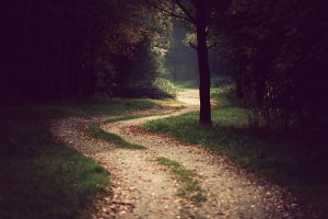 The Journey by Juhan