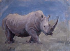 Rhino on the easel by hotnotvissie