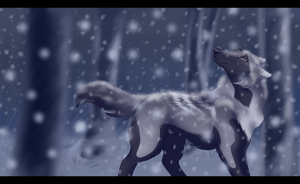 Winter Serenity by Wildfire-Tama