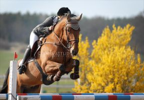 For the sun by attlid