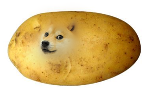 Potato Shibe wow by potatoe-sama
