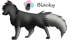 Blacky by Agelenawolf