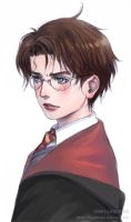 Harry Potter by logosles