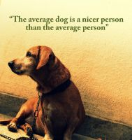 Dog a nice person by Praveenfca
