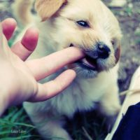 Give me yor fingers by LuizaLazar