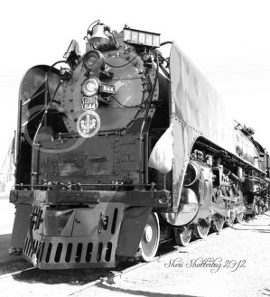 Steam Locomotive No. 844 I Updated by Scooby777