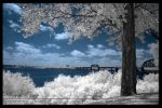 Infrared Louisville 3 by GothicAmethyst
