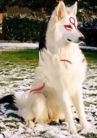 """Real Okami """"without weapon"""" by ravingwolves"""