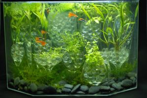 black rocks in a glass house - planted aquarium by Ivixx