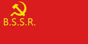 BSSR Flag by Party9999999