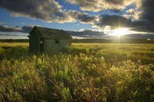 Hovel in the Field by tfavretto