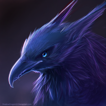 Birdy Head by ShadowDragon22