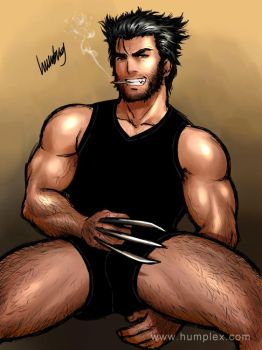 Wolverine by gillysilver
